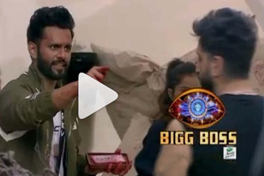 Bigg Boss 14, Rahul Vaidya, Aly Goni, Nikki Tamboli